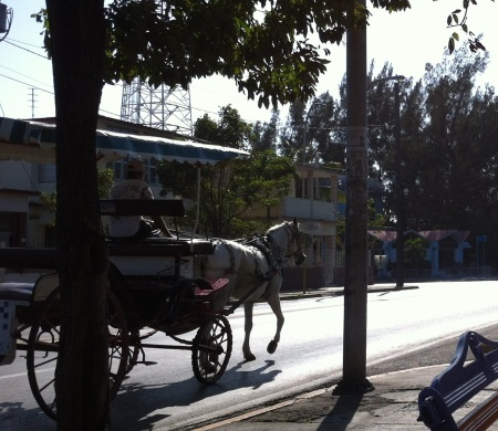 The horse and carriage is still a common form of transportation in Cuba - not just a tourist thing it seems