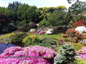 Abkhazi Garden - Victoria Canada